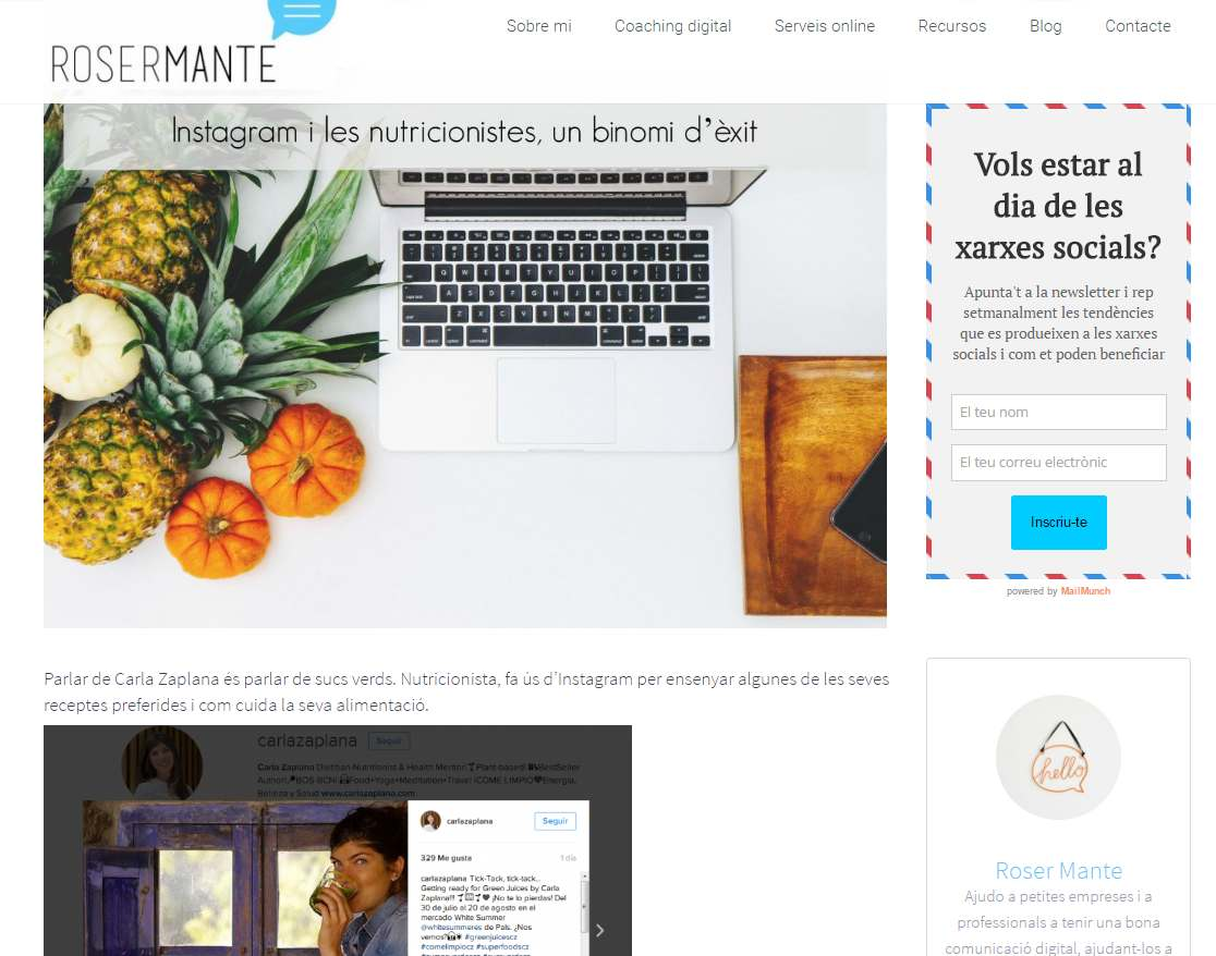 como trabajan - roser mante - post blog instagram